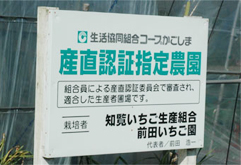前田いちご園は生協コープかごしまの産直認証指定農園